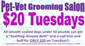 $20 Tuesday promo