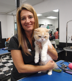 cat grooming is available at pet vet supply